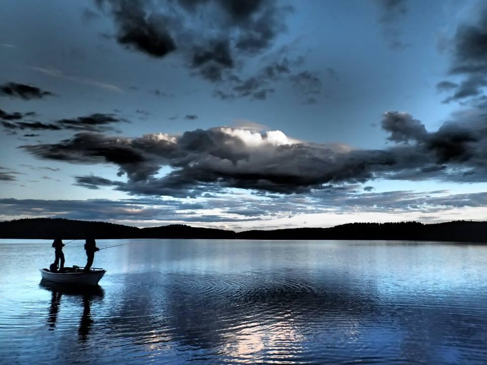 Fiske2-juni-2013